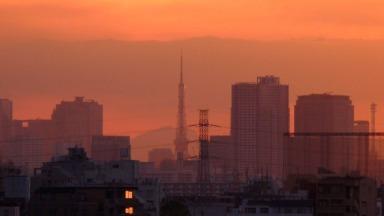 ビルの隙間に東京タワー