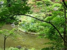 弁天池にて
