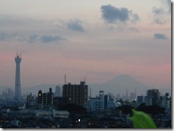 東京スカイツリーと富士山