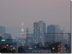 里見公園からみた東京タワー