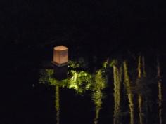 川面に映った竹林をゆく
