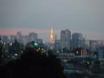 東京タワーのアップ