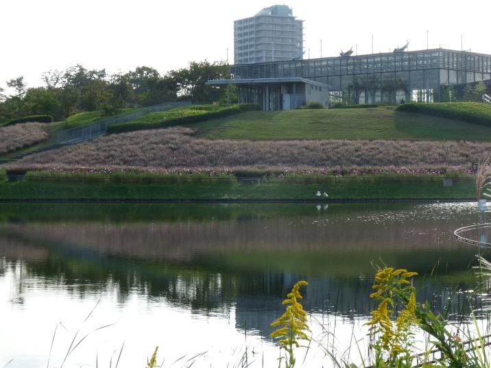 園内の池に移るソバ畑と管理棟