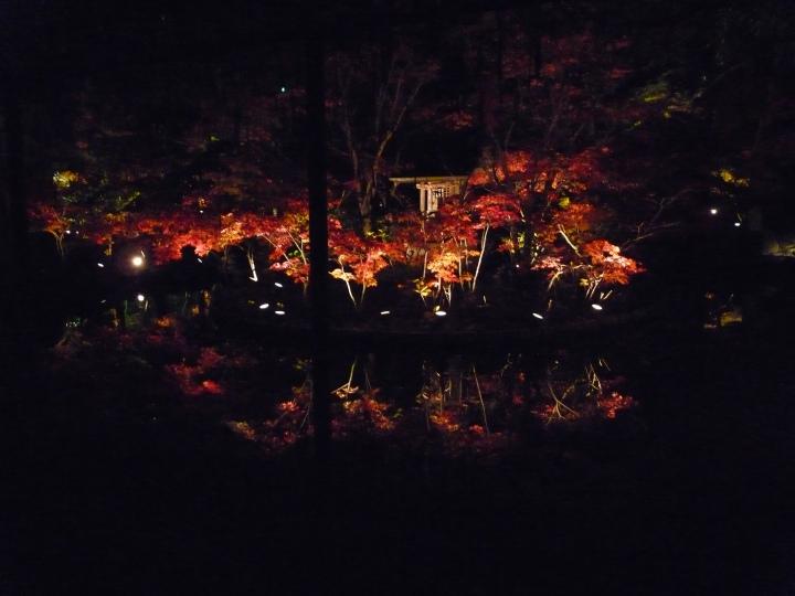 2010.11撮影逆さ紅葉@本土寺