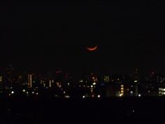 野菊苑で見た月の入り