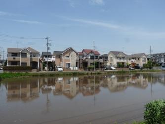 途中見かけた住宅地と池
