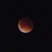 今日未明の月食@千葉県松戸市矢切