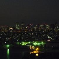 幕張新都心の夜景@千葉ポートタワー