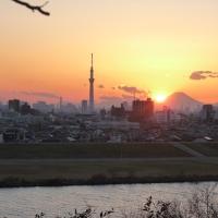 スカイツリーと夕日と富士山@千葉県市川市里見公園