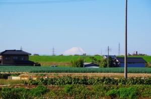 土手から覗く富士山