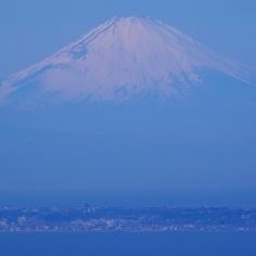 三浦半島越しの富士山