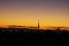 左の東京タワーに灯りが