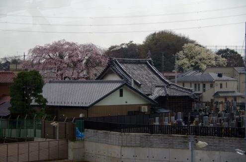 武蔵野線東松戸駅のプラットフォームから
