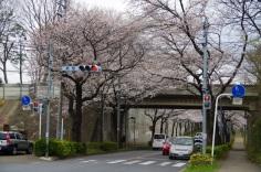 紙敷交差点はJR武蔵野線の高架すぐそば