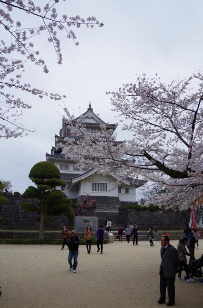千葉城と桜1