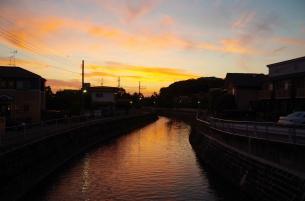 真間川の夕日