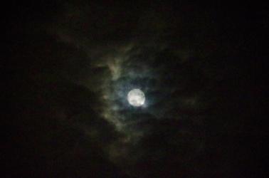 オマケ:雲越しの月