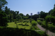 ガーデンギャラリーの中庭