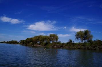 矢切の渡しから見た松戸の川岸