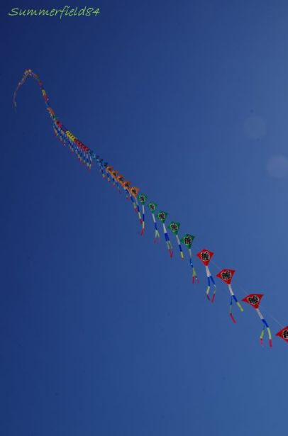10/13は連凧が上がってました