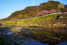 保田川対岸から