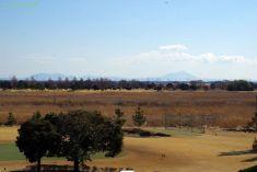 ヨシの原手前はゴルフ場、向こうは筑波山