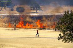炎をバックに普通にゴルフ