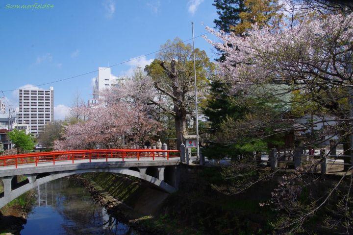 松戸神社参道の橋と