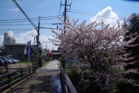松龍寺への橋