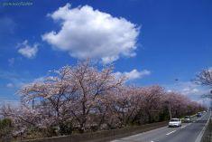 西白井駅-白井駅間にて