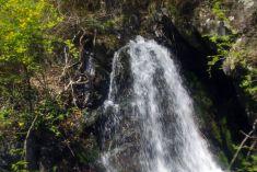 近くの車窓で見れる汽車見の滝