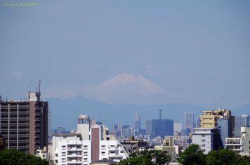 意外と見えた富士山