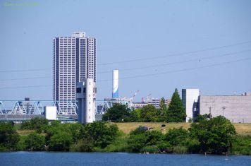金町駅近くのマンションと松戸市の柳原水門