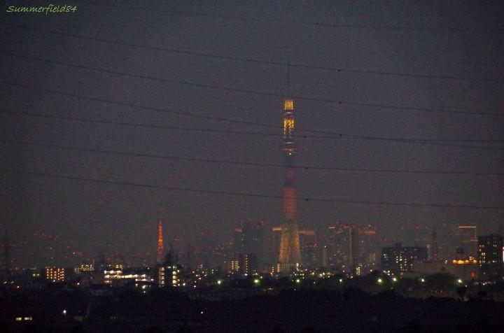 東京タワーとスカイツリー(明花)