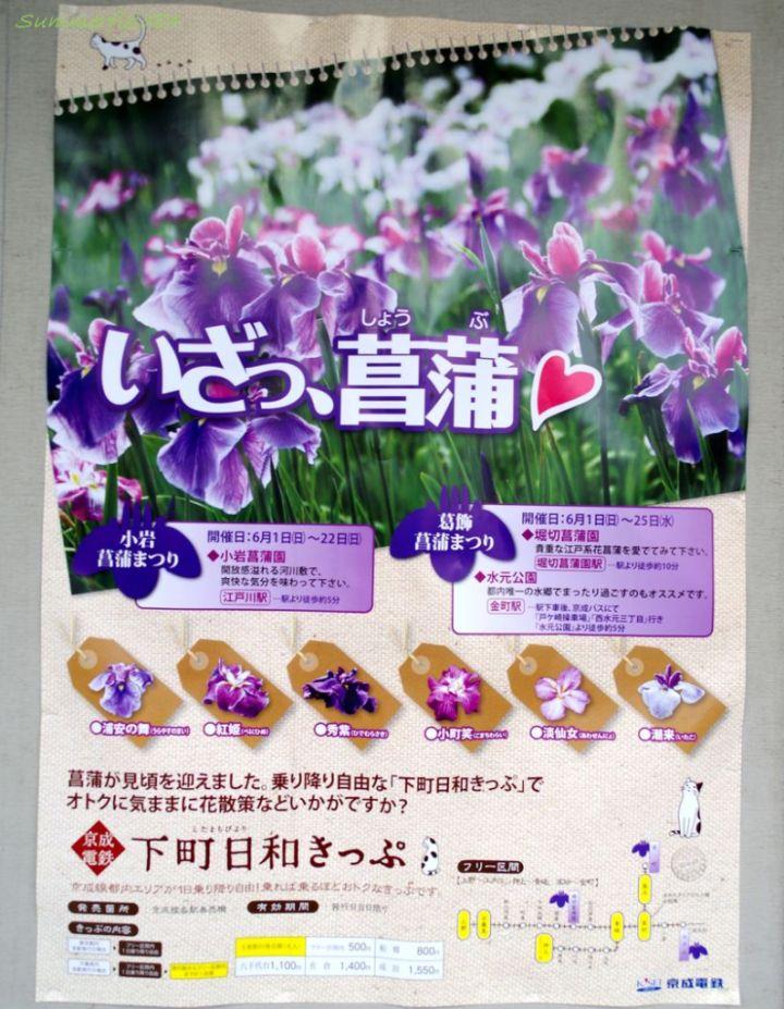 京成線江戸川駅にて