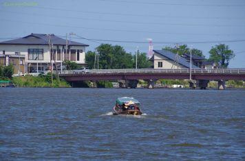 与田浦を行く観光船