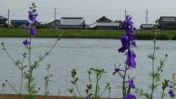 対岸は千葉県