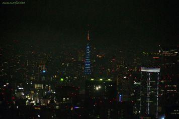 ダイヤモンドベールの東京タワー