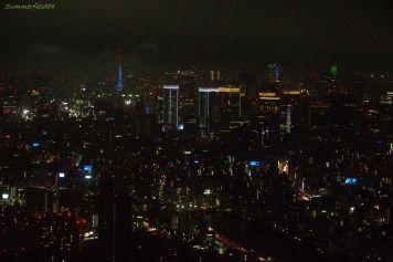 東京タワーの周り▲横◆ン大杉
