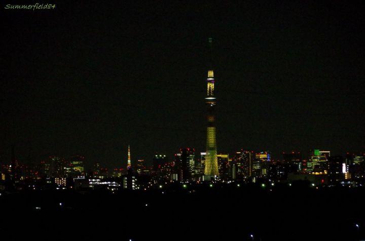 明花(ひまわり)のスカイツリーと東京タワー