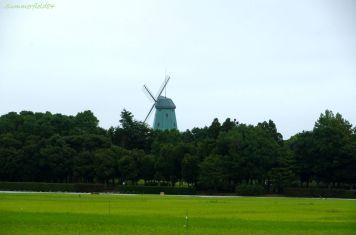 総合運動公園の風車