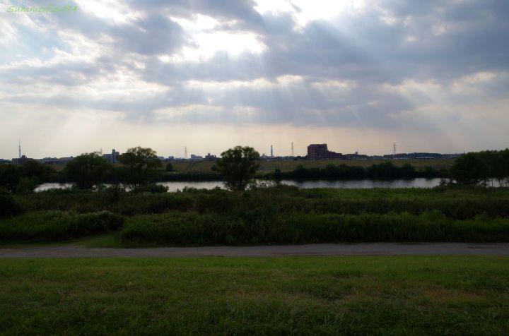 松戸側からの江戸川