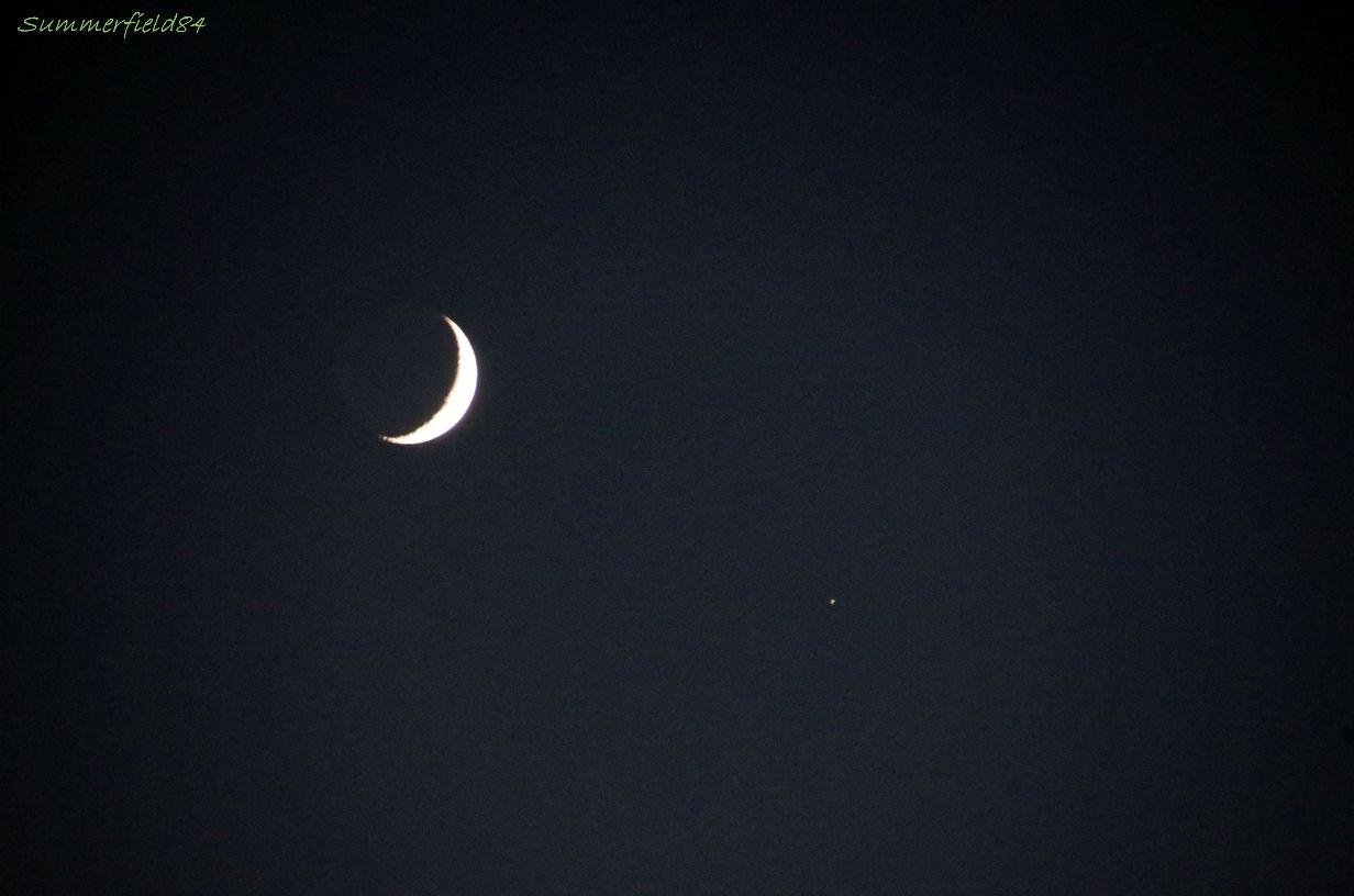 土星食明けの三日月@松戸市矢切