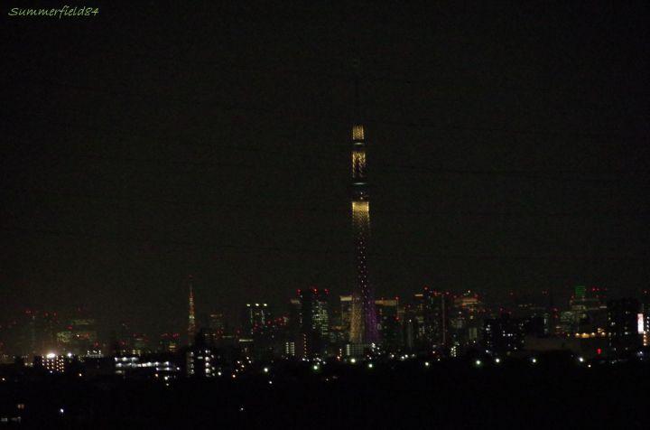 お約束の東京タワーとスカイツリー(雅)