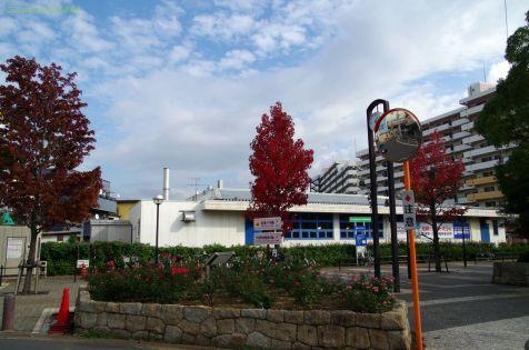 谷津駅からの通り道