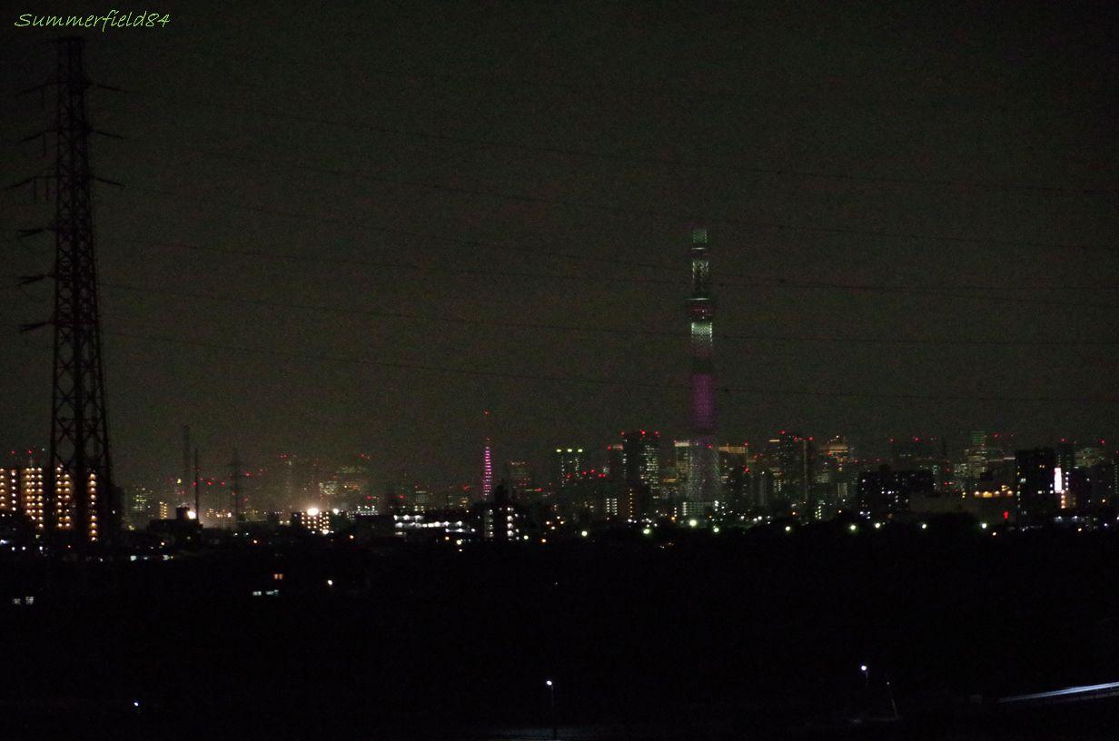 ピンクに光る2つのタワー@矢切富士見台歩道橋