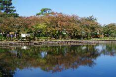 高田城の内堀
