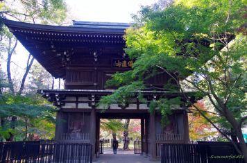 仁王像のある門