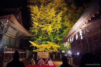 千本公孫樹