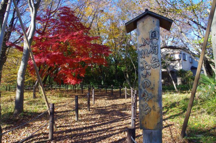 じゅんさい池緑地公園と里見公園にある国府台ふれあいの道